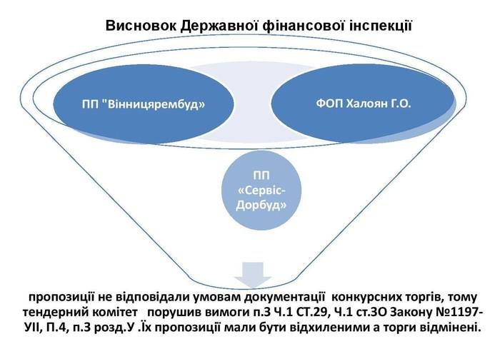 висновок фінансової інспекції щодо ремонту доріг у Сутисках фото