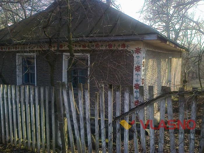 хата з черепашок у селі Орлівка фото