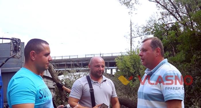 вирізання дерев на Київському мосту фото