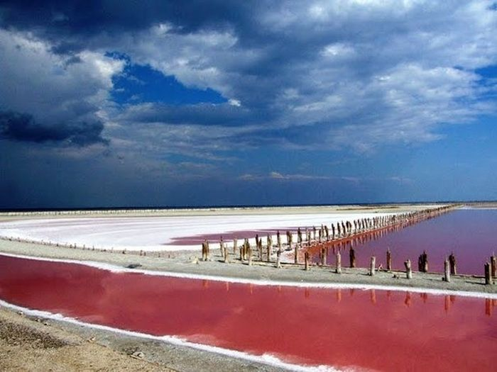 """рожеве """"мертве море"""" на Херсонщині фото"""