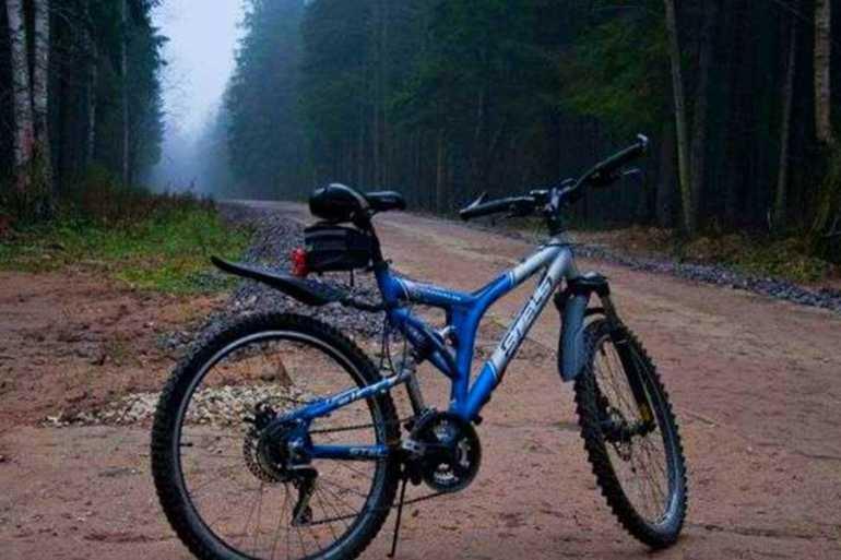 велосипед стелс адреналин запчасти российской